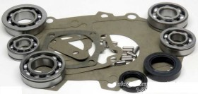 Toyota T Series Overhaul Kit DTS-BK176A